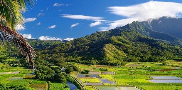 Trafalgar Tours | Hawaiian Discovery Premium Summer 2019