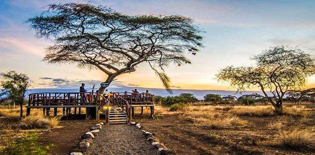 Contiki   Kenyan Highlights