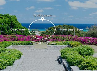 Freedom, Western Caribbean Cruise ex Galveston Roundtrip
