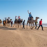 Intrepid | Morocco Family Holiday