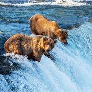 Intrepid   Best of Alaska