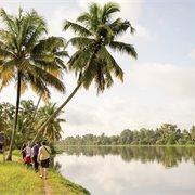 Intrepid | Classic South India