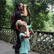 Intrepid   Borneo Family Holiday