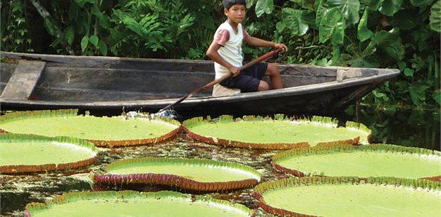 Intrepid | Peru: Amazon Jungle Short Break