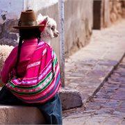 Intrepid | Majestic Peru
