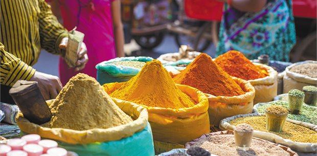 Intrepid | India Real Food Adventure