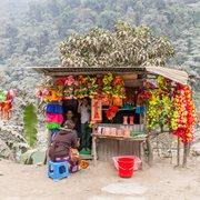 Intrepid | One Week in Nepal