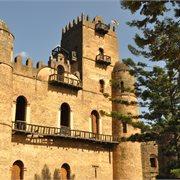 Intrepid | Best of Ethiopia