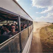 Intrepid   Kenya Wildlife Safari