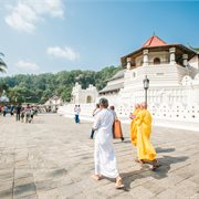 Intrepid | Classic Sri Lanka