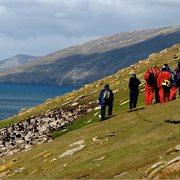 Peregrine | Crossing the Circle via Falklands & South Georgia