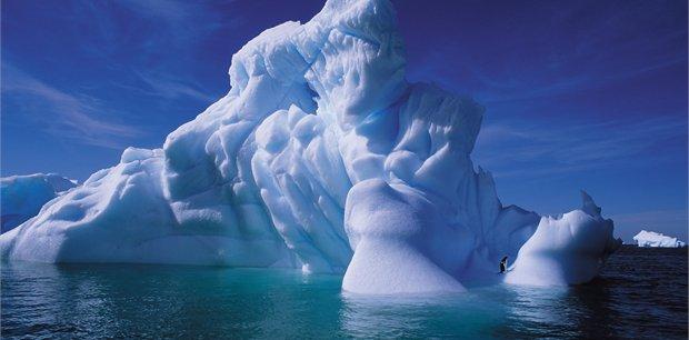 Peregrine | Antarctic Explorer from Ushuaia 11 day