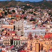 Peregrine | Mexico In Depth