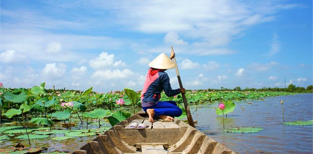 Peregrine | Vintage Vietnam