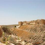 Peregrine | Classical Egypt & Jordan