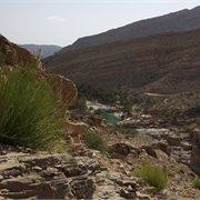 Peregrine | A Taste of Oman