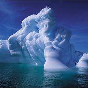 Peregrine | Antarctic Peninsula, Falkland Islands & South Georgia from Ushuaia