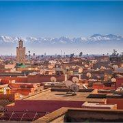 Peregrine | Morocco Explorer