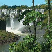 Peregrine | Argentina & Brazil Highlights