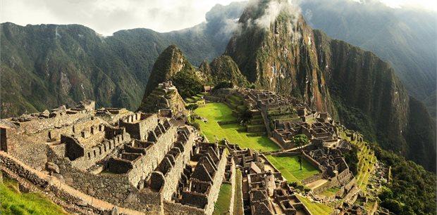 Peregrine | Best of Peru