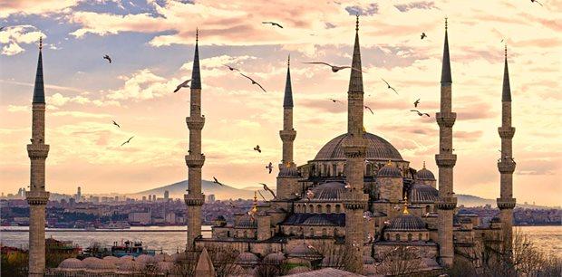 Peregrine | Treasures of Turkey