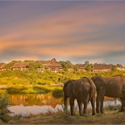 Peregrine | Experience Botswana