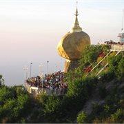 Peregrine | Magical Myanmar