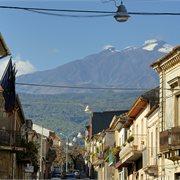 Peregrine | Spirit of Sicily
