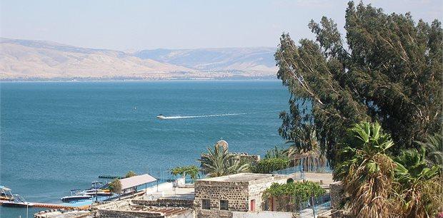 Peregrine    Journey Through Israel & the Palestinian Territories
