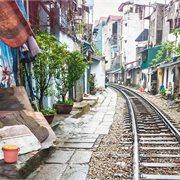 Geckos | Vietnam Traveller