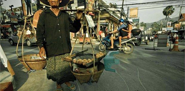 Geckos | Vietnam Highlights
