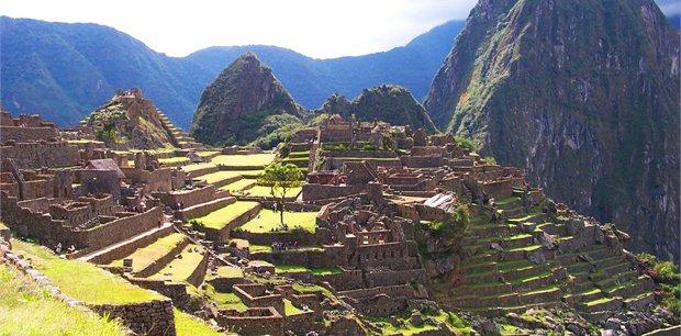 Geckos | The Inca Trail