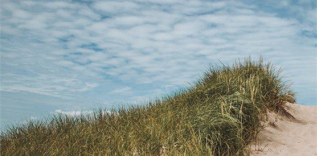 Trafalgar Tours | Cape Cod Delights Summer 2019